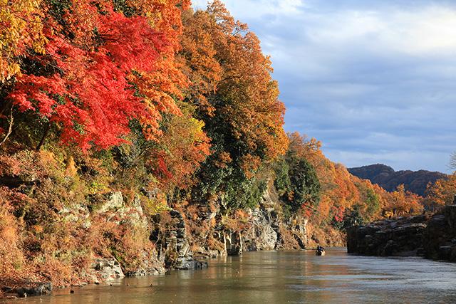岩畳の紅葉